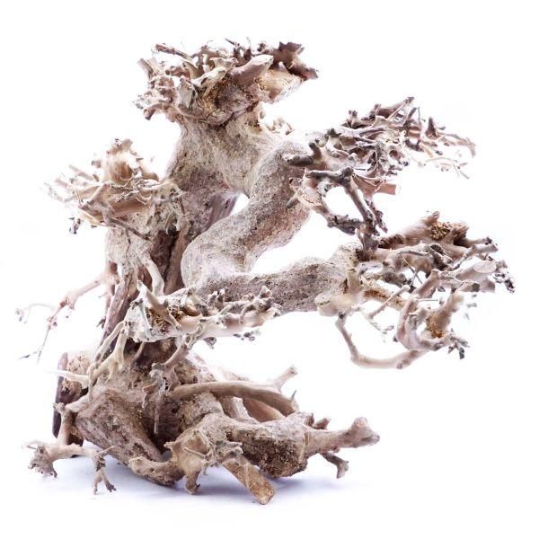SuperFish Holz Bonsai Treibholz (Größe M)