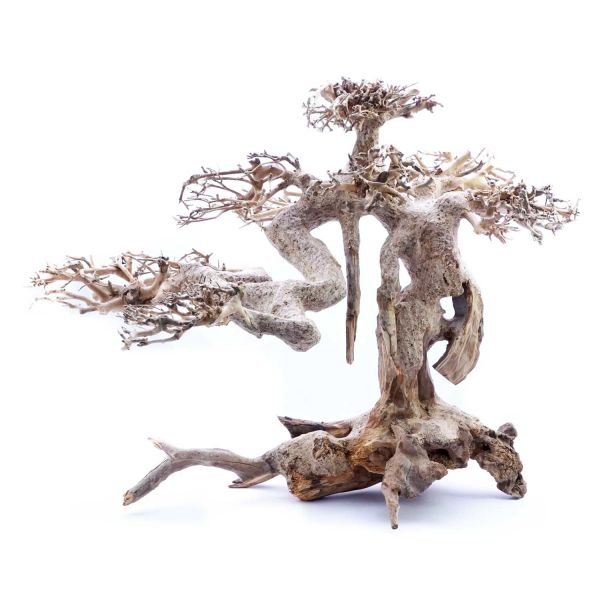 SuperFish Holz Bonsai Treibholz (Größe L)